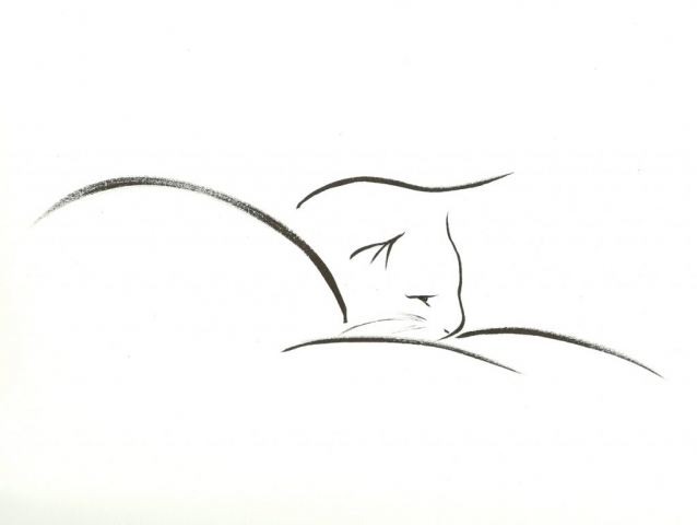 drawing of reclining cat