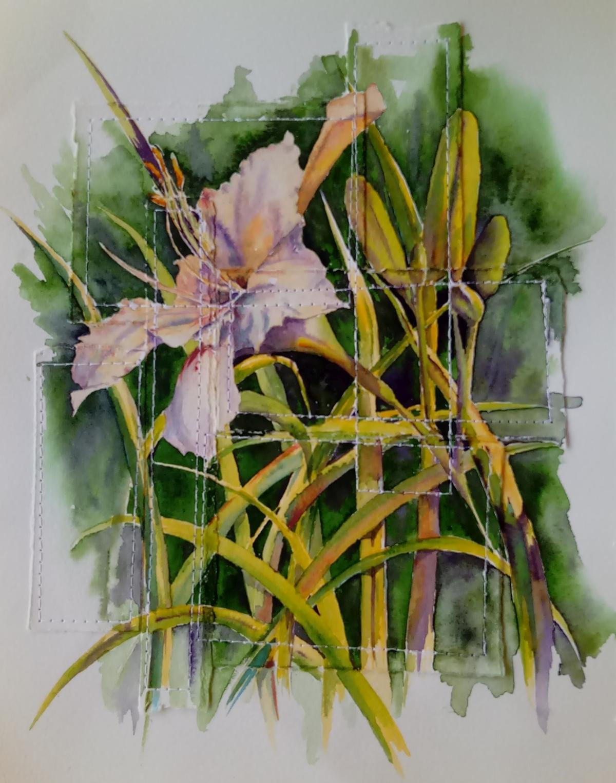 white daylily