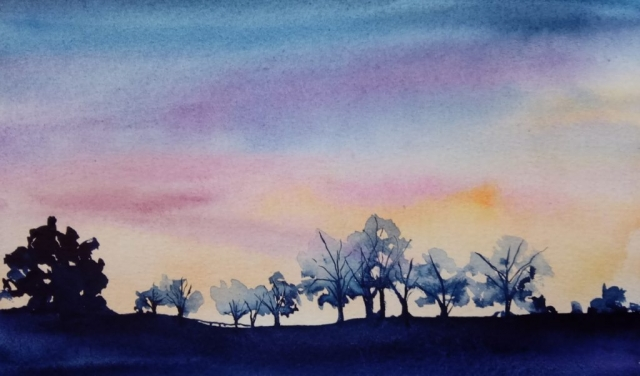 winter sunset with silhouettes of trees